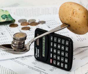 В 2020 году малый бизнес пополнит бюджет Тольятти на дополнительные миллионы рублей
