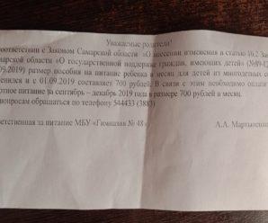 Многодетным родителям тольяттинских школьников предложили доплатить по 2800 рублей за питание в сентябре-декабре 2019 года