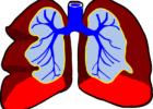 Всех затемпературивших жителей области от 18 и старше будут отправлять на компьютерную томографию легких в Самару