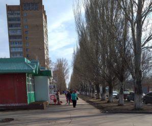 Режим самоизоляции в Тольятти рухнул