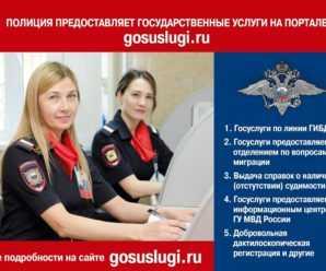 Полиция Тольятти предоставляет ряд сервисов на портале gosuslugi.ru