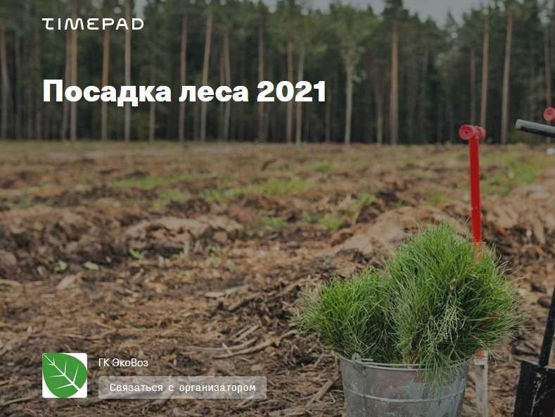 24, 25 апреля и 1 мая: посадка леса в Тольятти