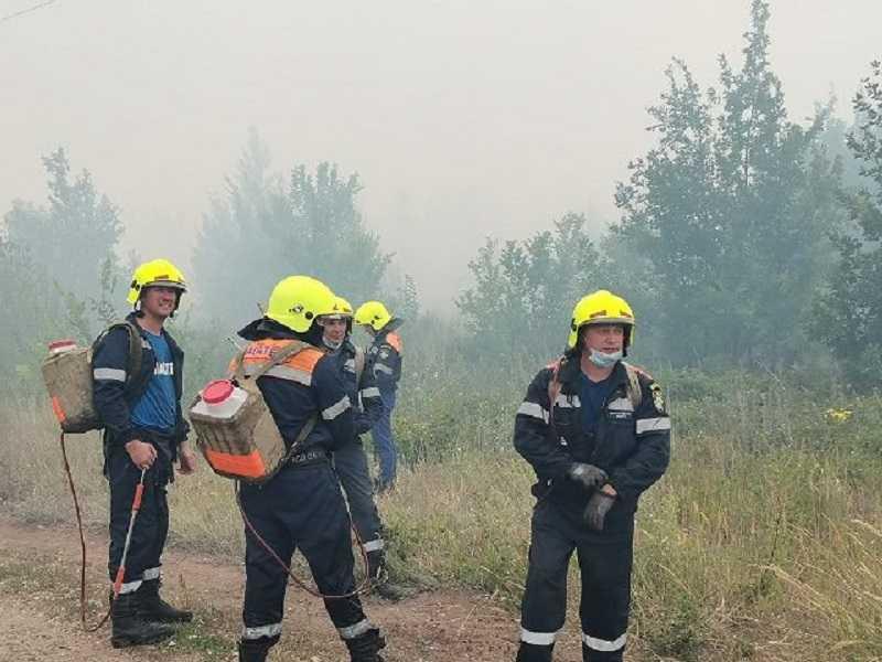 В Тольятти отчитались о победе над крупнейшим с 2010 года лесным пожаром и занялись поисками поджигателей