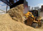 Рекордный урожай-2017 обрушил цены и навредил аграриям Самарской области
