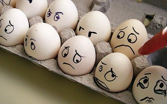 Правительство Самарской области задумало перевести Тольяттинскую птицефабрику на яйца