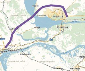 Дмитрий Азаров: мост Тольятти-Климовка пока не обоснован