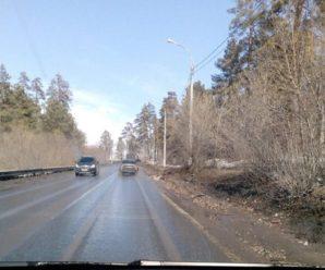 Дорога через зеленую зону Тольятти вновь стала колейной