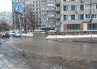 Бобры асфальтовых рек Тольятти (ВИДЕО)