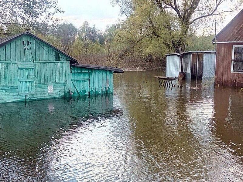 В Тольятти готовятся к подтоплению Копылово и Федоровских лугов: экологи боятся за икру