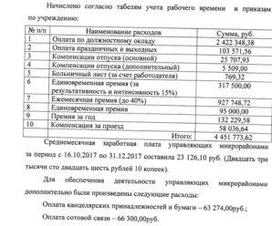 На общественные советы микрорайонов Тольятти уходят миллионы