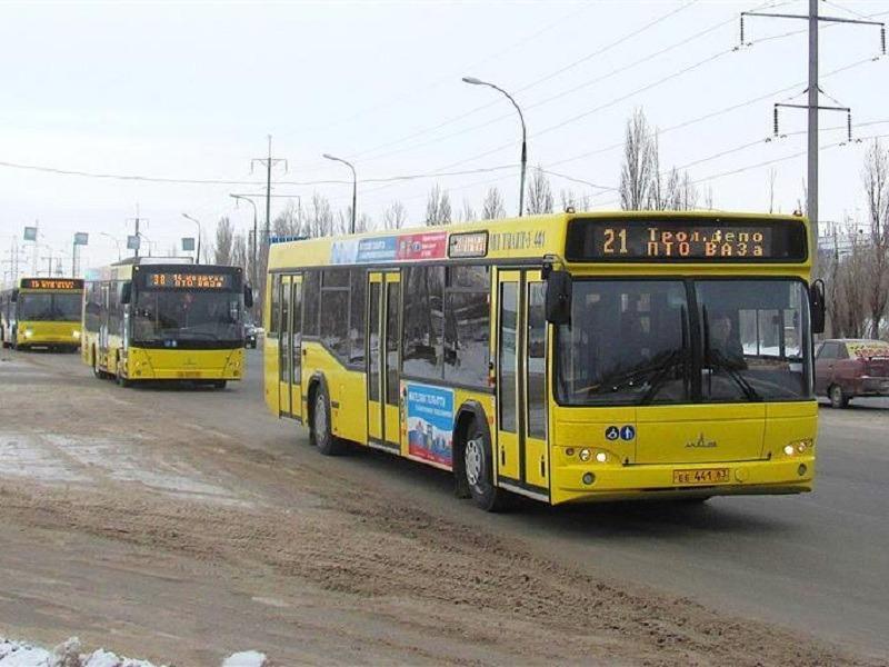 Анташев: муниципальные автобусы Тольятти возят по 10 человек