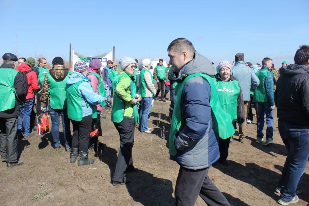 22 апреля: посадка леса в Тольятти