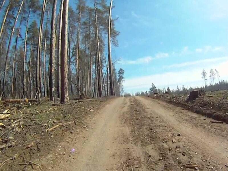Азаров: тольяттинцы могут разрушить свое соседство с природой