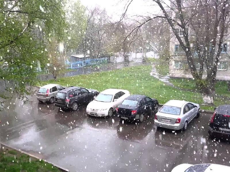 В Тольятти пришло холодное лето 2018-го