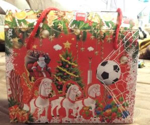Детский новогодний подарок от Азарова-2017: прощай, Мордовия!