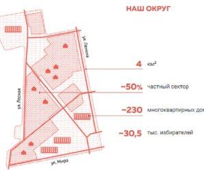 В Тольятти вышла книга о правильной работе депутата, которая не понравится почти никому