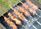 Тольяттинцам пообещали возможность жарить шашлык на опушке леса с 15 августа