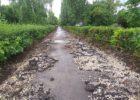 В Автозаводском районе Тольятти активно ломают тротуары в хорошем состоянии