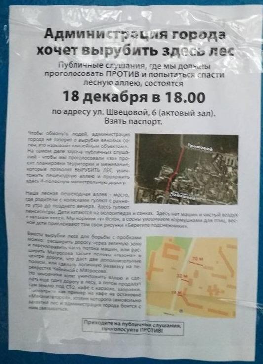 Жители Комсомольского района готовятся защитить лес и белочек от новой автомобильной дороги