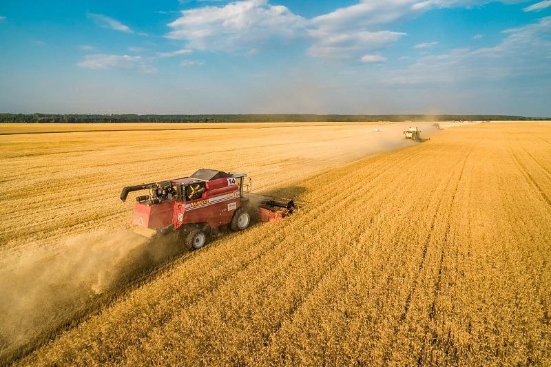 Уборка урожая в Ставропольском районе: вид сверху (ФОТО)