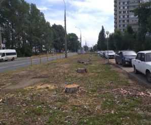 Часть 4-го квартала по улице Дзержинского радикально зачистили от взрослых деревьев