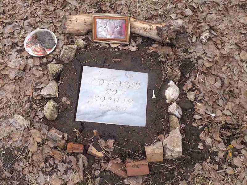 Неофициальное тольяттинское кладбище домашних животных за Спортивной продолжает расширяться