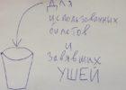 Культурная отсталость Тольятти: аудиопоздравления в общественном транспорте
