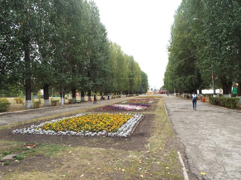 Батареи начнут жарить во всех домах Тольятти в разгар бабьего лета?