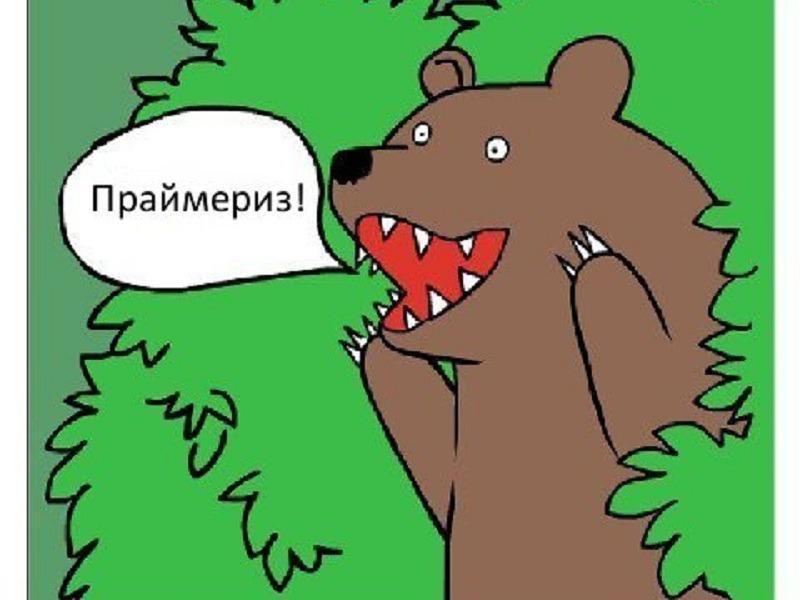 Тольяттинские единороссы-победители: вы их знаете?