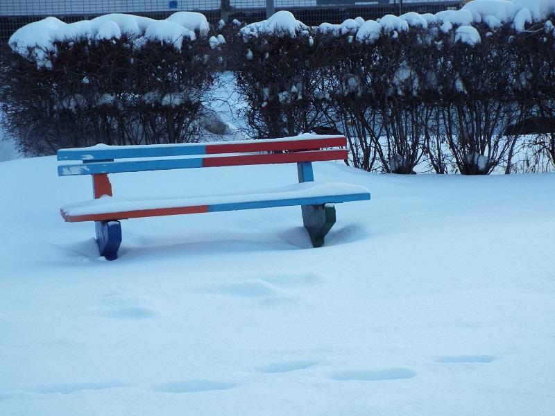 Синоптики сообщили об ожидающемся в Тольятти холодном и малоснежном феврале